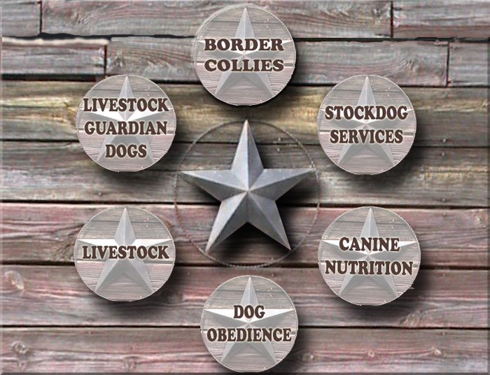 Anatolian Shepherd, Border Collies, Livestock dogs, Coyote Control